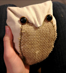 rustic-and-cute-baby-owl
