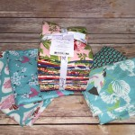 Spirit Fabric Bundle