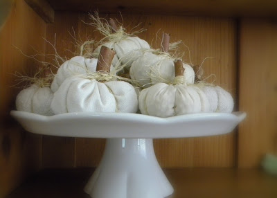 White Pumpkin Pattern