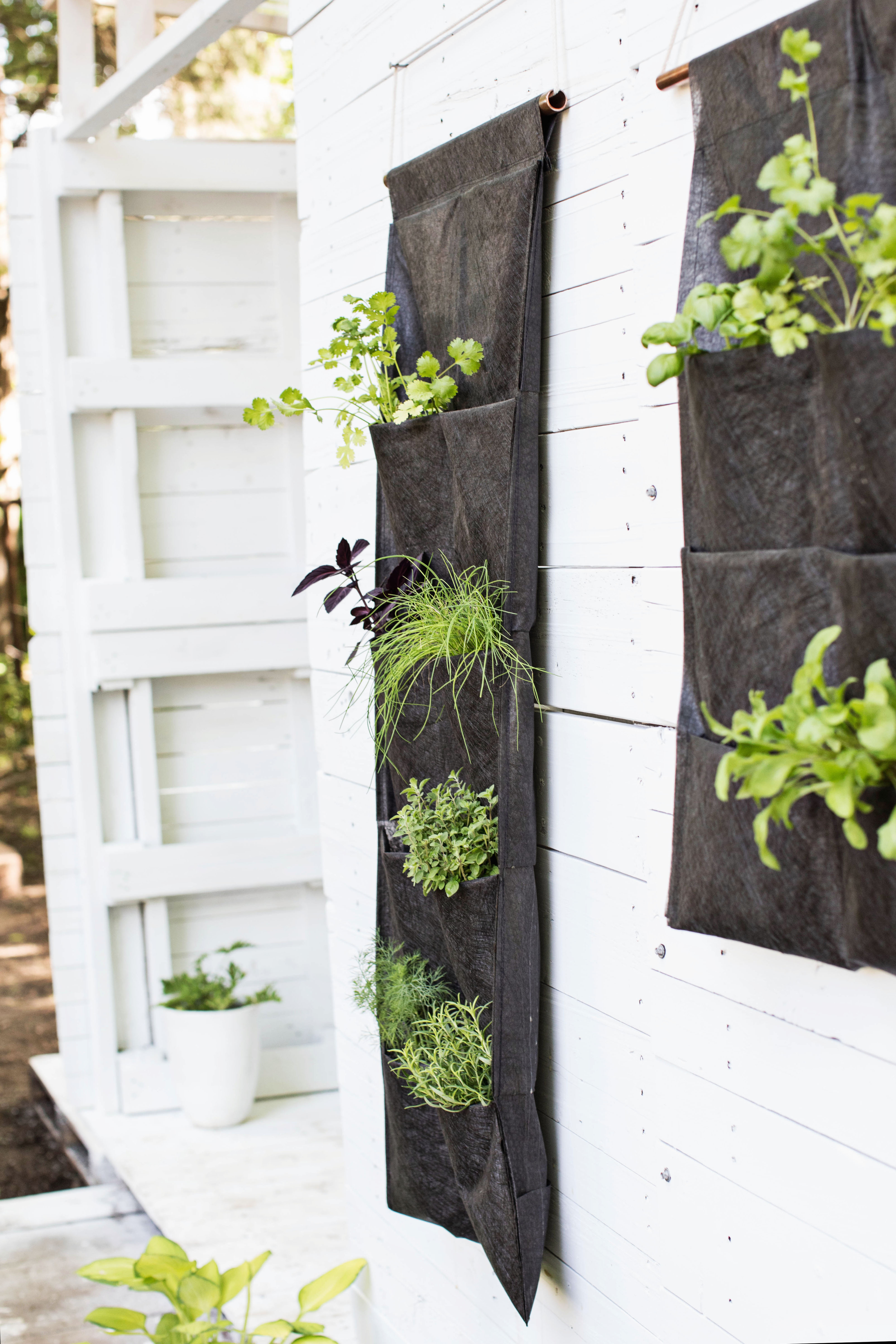 Vertical DIY Herb Garden